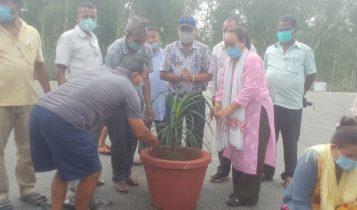 धरमपुरमा फूलसहित गमलाले सडक सजाइयो, किनमेलका लागि बजार आउनेलाई निःशुल्क मास्क बितरण